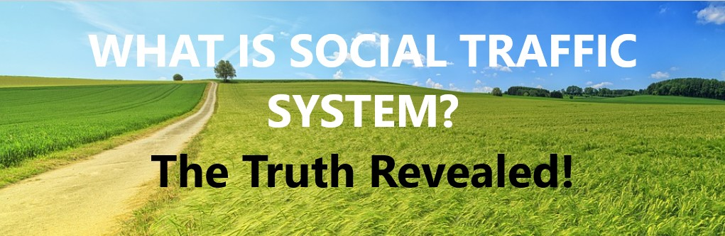 What is social traffic system